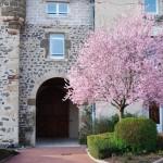 cour_interieure_printemps_