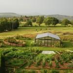 Jardin bio et serre